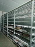 Kühlraum für Obst- und Gemüse /Meat Kaltlagerung