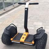 Grand scooter de pneu de deux roues