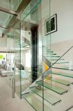La construction Tempered a feuilleté les escaliers isolés de marchepied de frontière de sécurité en verre