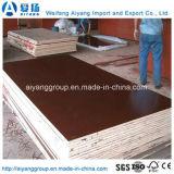 Bois de construction et constructeur de contre-plaqué en bois