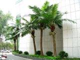 Польза Gu54350033623613447kjab искусственной пальмы кокосов напольная или крытая