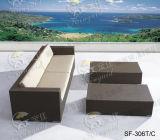 Jogos ao ar livre do sofá, mobília do Rattan do pátio, jogos do sofá do jardim (SF-306)