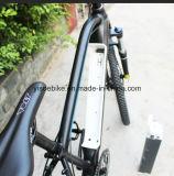 Bicicletas elétricas do estilo da montanha com projeto da forma para o mercado do russo