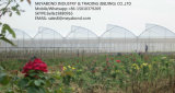 anti réseau de l'insecte 50mesh pour la compensation de serre chaude de Contral de parasite