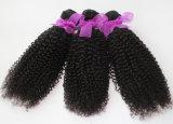 cabelo Kinky da onda do Weave brasileiro do cabelo humano do Virgin 8A