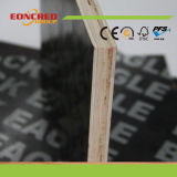 El uso relanzado película de más de 10 veces hizo frente a la madera contrachapada