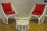 Tableau Furniture-130 extérieur de rotin de loisirs
