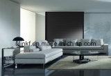 أثاث لازم حديث بيتيّة مترف [لهتر] يعيش غرفة أريكة ([أول-نس010])
