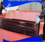A película de Brown da madeira compensada da construção do núcleo do vidoeiro/Poplar enfrentou a madeira compensada para o concreto