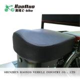 La fabbrica della Cina fornisce due motorini elettrici di mobilità del motorino della rotella