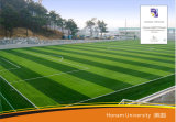 Herbe artificielle pour le football, herbe pour le football, herbe sportive (Se40)