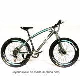 베스트셀러 눈 중국제 뚱뚱한 타이어 자전거 (MTB-37)