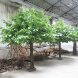 熱い販売及び専門の人工的なりんごの木