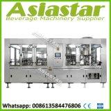 Personalizado automático de agua de coco y jugo Botella Máquina de procesamiento de llenado en caliente