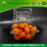 Recevoir le conteneur de empaquetage de bloc supérieur d'ampoule de la commande à façon Pet/PVC/PS pour le fruit