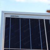 Comitato policristallino delle pile solari 250-275W delle Q-Celle in azione