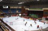 Noice réduit et étages d'hockey de Cleanig/tuiles faciles d'hockey plancher d'hockey