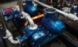 Completare l'impianto di lavaggio del biogas dell'acciaio inossidabile/sistema pulito del biogas/il sistema/biogas purificazione del biogas pulito