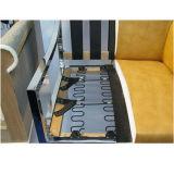 Molla di zigzag del sofà di rotolamento
