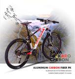 Углерод Bike с Xcm гидровлической вилкой