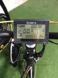 Bicicleta Foldable elétrica da cidade de alta velocidade grande da potência