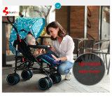 I sistemi Rated superiori di corsa del bambino di qualità si siedono e si levano in piedi il passeggiatore