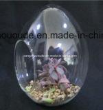 Floreros de cristal colgantes soplados hechos a mano del diseño de la manera
