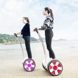Individu d'Andau M6 équilibrant le fournisseur de Hoverboard