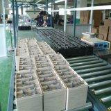 Constructeurs scellés par MSDS profonds de la batterie d'acide de plomb 12V 120ah de cycle d'AGM