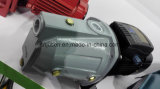 Мотор 750W DC Homeuse новой модели для насоса Jet-100bx центробежки