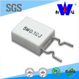 Rgcw Ceramic Encased Wire Wound Variable Resistor (RX27-7)