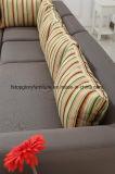 Patio esterno moderno Sofatg-6105 esterni di svago del tessuto di 2*2 Textilene)