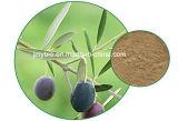100% natürliches olivgrünes Blatt-Auszug-Oleuropein und Hydroxytyrosol 40% für kardiovaskuläre Krankheit