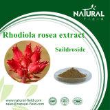 Het Poeder van Saildroside van het Uittreksel van Rhodiola Rosea van de Levering van de fabriek