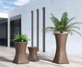 PEの藤の植木鉢ラック藤の装飾の藤の家具
