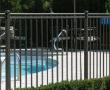 Rete fissa nera rivestita della piscina della polvere