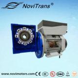 мотор servocontrol AC 3kw с Decelerator (YVF-100A/D)