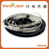 Iluminação de tira do diodo emissor de luz de DC24V 16W/M SMD 2835 para centros da beleza