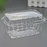 Прозрачный томат вишни & упаковка померанцев пластичная