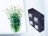 500W 식물성 꽃 가득 차있는 스펙트럼 위원회 LED는 빛을 증가한다