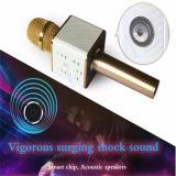 Bewegliches Mikrofon Bluetooth des Radioapparat-Q7 Stereokaraoke-Mikrofon
