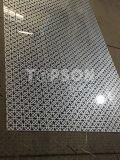 Décor décoratif d'ascenseur de couleur gravure de feuille d'acier inoxydable