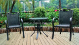 Mobília ao ar livre da tabela e da cadeira do Rattan ajustadas (LL-RST006)