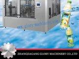 Goldlieferanten-automatische Warmeinfüllen-Maschinen-Fruchtsaft-Füllmaschine