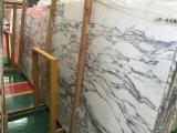 Белые мраморный слябы для плитки