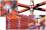 Système en acier Individu-Verrouillé d'échafaudage de serrure de tasse