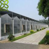 Casa verde do passatempo da vertente do policarbonato