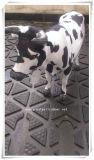 Revestimento de borracha da esteira da vaca da esteira da vaca/vaca, revestimento de borracha, com certificado do alcance