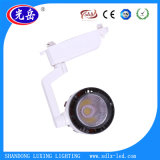 Популярный 20With30W светильник следа следа Light/LED УДАРА СИД для крытого освещения