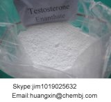 Polvere steroide grezza dell'ormone maschio naturale di Enanthate del testoterone di elevata purezza